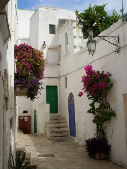 An alley in OStuni, Italy, with colorful flowers and painted doors
