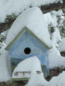 birdhouse with snowdrifts