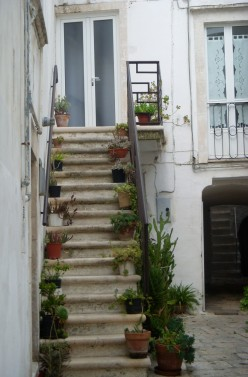 outside stairway with potted plants