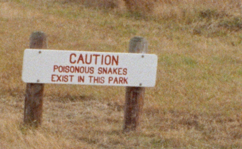 Poisonous Snakes sign
