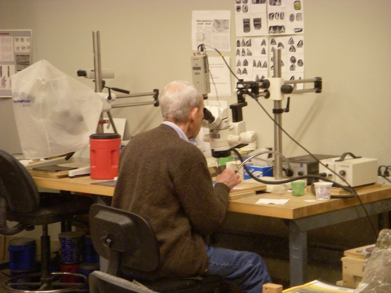 a scientist at work in the Paleolab at the Carnegie Museum of Natural History