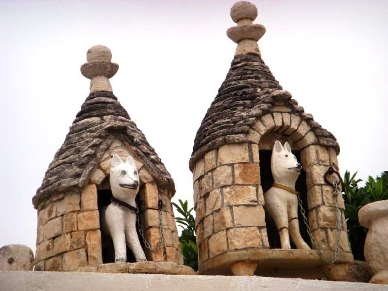 dogs in trulli houses