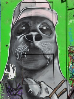 Seal Portrait Street Art in Reykjavic