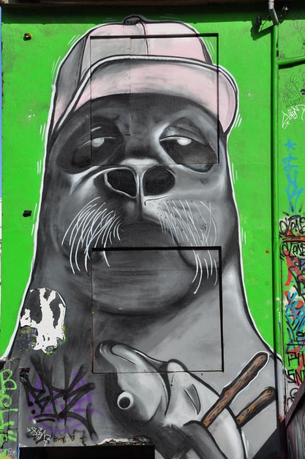 Seal Portrait Street Art in Reykjavic