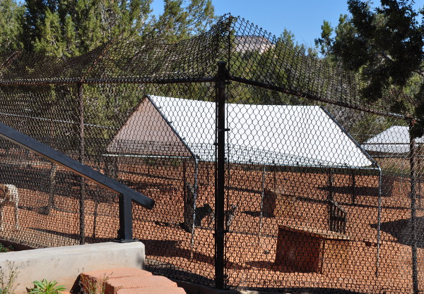 dog runs at Best Friends Animal Sanctuary in Kanab, Utah